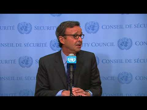 SC President (Italy) on Sudan, South Sudan and other topics - Media Stakeout (15 November 2017)