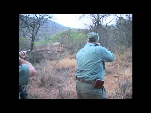 Exposing a Rhino Hunt