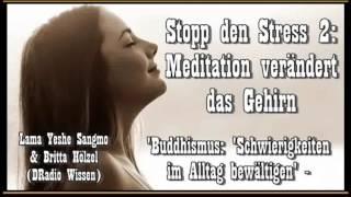 Stopp den Stress! 2: Meditation verändert das Gehirn - L. Y. Sangmo + Britta Hölzel (DRadio Wissen)