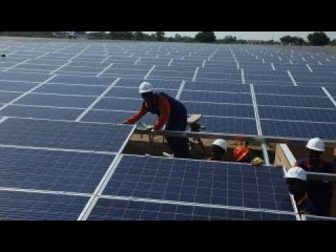 Eliminate solar company tax credit: Robert Murray
