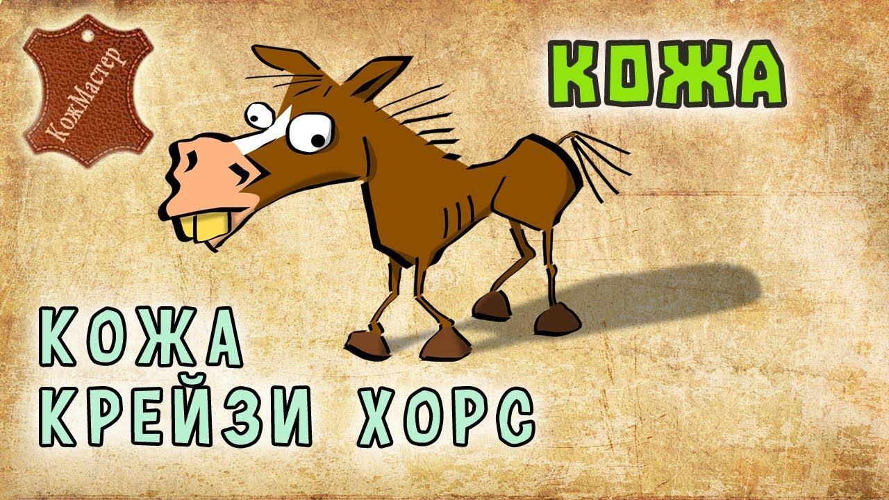 Особенности кожи крейзи хорс. Features of <b>leather crazy horse</b> ...