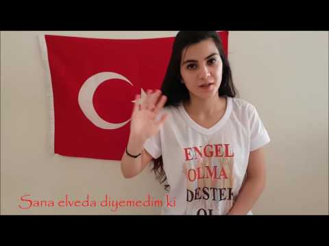 15 Temmuz Darbe - Murat Evgin - Her şehidin ardından İşaret Dili