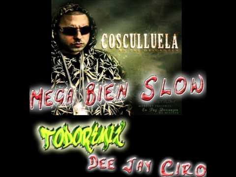 Mega Bien Slow - Acapella Mix [Dee Jay Ciro] (((TodoRemix 2011))