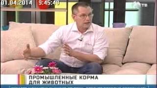 Мартин Кваш, разработчик сухих кормов Brit в программе «Утро с «Губернией» эфир от 01.04.2014 г.
