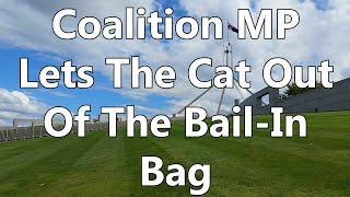 Coalition MP Lets The Cat Out Of The Bail-In Bag