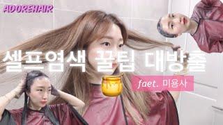 미용사가 알려주는 셀프염색 꿀팁 대방출(feat. 코발…