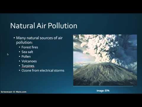 Lesson 2  1. Natural Air Pollution
