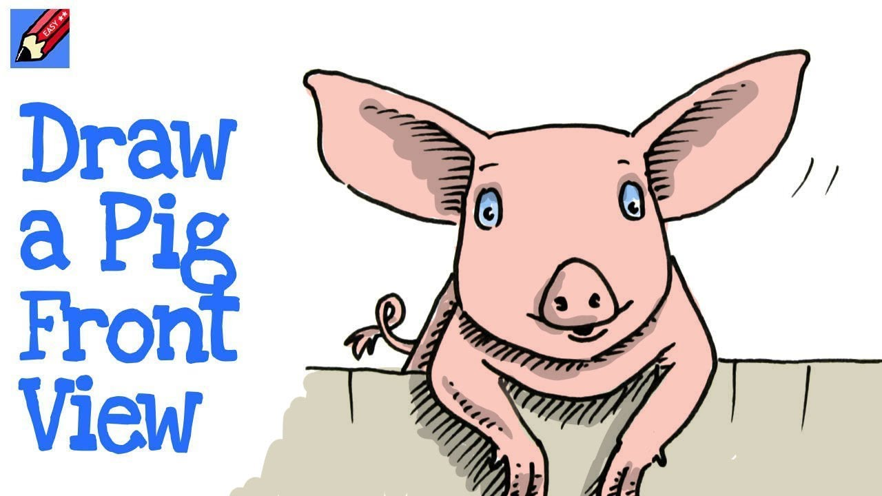 How To Draw A Pig Front View Real Easy Chinese New Year 2019 Youtube