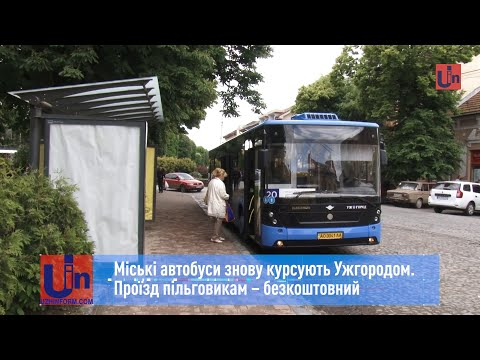 Міські автобуси знову курсують Ужгородом. Проїзд пільговикам – безкоштовний