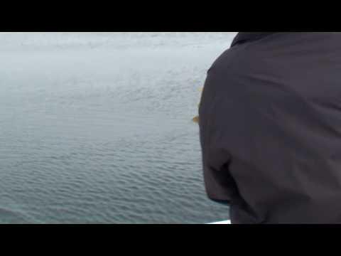 Pacific Coast Charters - Jeff Fishing