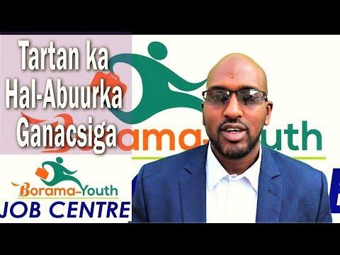 Baahin Maal gelin Fursad Ganacsi Borama Youth Job Centre