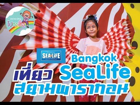 เที่ยว Bangkok Sea Life Ocean World ที่สยามพารากอน ไปกะปิ๊ง
