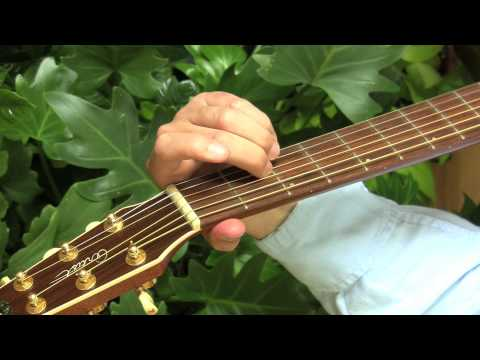 One Finger Guitar Chords for Beginners--DADGAD Tuning