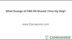 What dosage of cbd oil should i give my dog for pain?