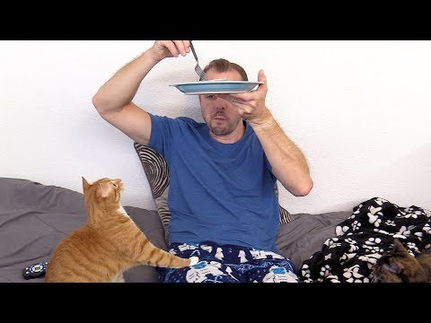 Trying To Eat Sushi with Cats Around