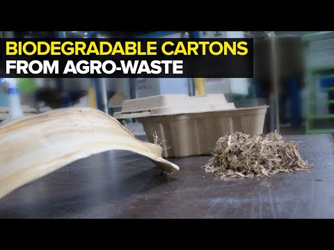 Bio-lutions - Agricultural Waste To Biodegradable Cartons & Tableware