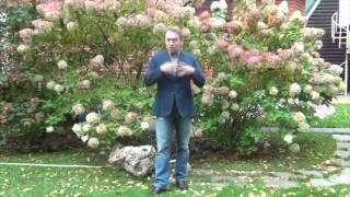 Видеоотзыв Олега Фролова по продвижению и раскрутки в YouTube