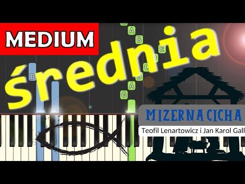 🎹 Mizerna Cicha - Piano Tutorial (średnia wersja) 🎹