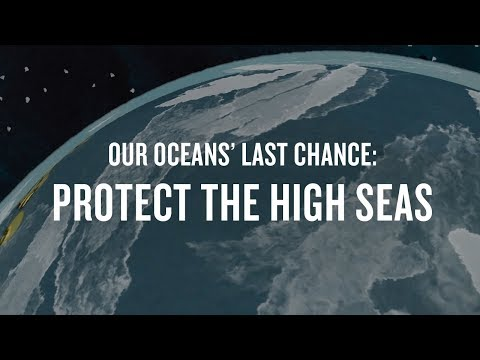 Our Oceans' Last Chance: Protect the High Seas