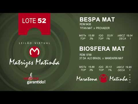 LOTE 52 Matrizes Matinha 2019