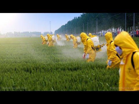 Zpátky mimo téma - GMO a Monsanto