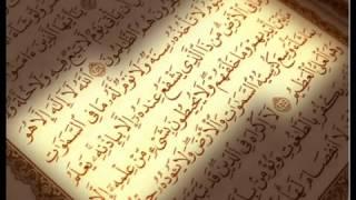 ســـــورة الليل مكررة - تعليم للاطفال - دماهر المعيقلى