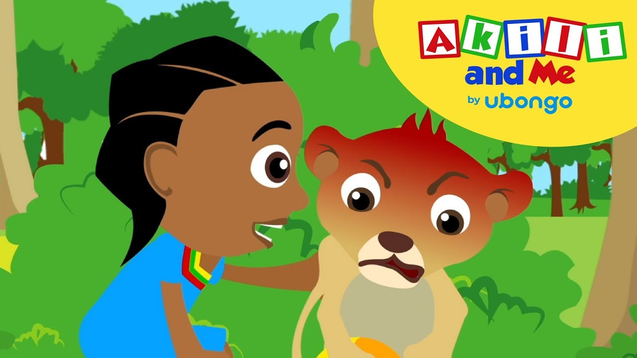 Little Lion Loses... | Feelings & Friends with Akili and Me | Educational Cartoons for Preschoolers