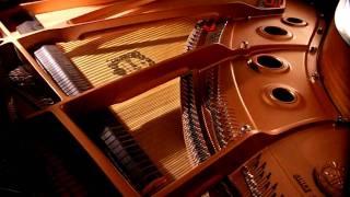 Bach: Praeludium Nr. 1 C-Dur, BWV 846 (Das Wohltemperierte Klavier); Version 1 (pedaliert)