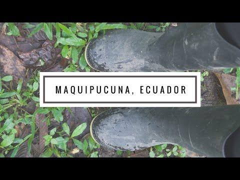 Travel Vlog | Maquipucuna Cloud Forest Ecuador