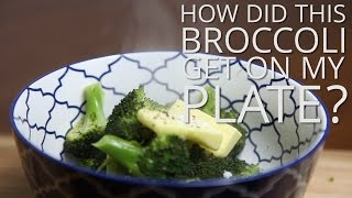 How Did This Broccoli Get To My Plate? Drink Eat Film - Farmers On Film