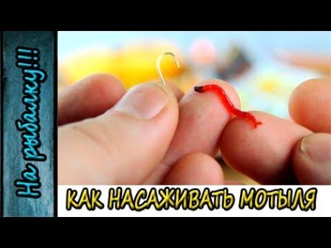 Как насадить мотыля на мормышку для зимней рыбалки,два способа