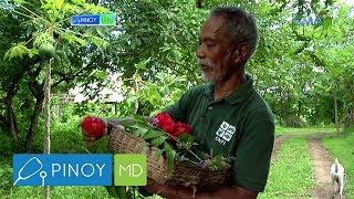 Pinoy MD: Mga alternative medicine, matatagpuan sa isang organic farm sa Quezon City