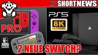 PS5 mit 8K und 24 GB RAM? / 2 neue Switch Varianten diesen Sommer?  - ShortNerdNews 405