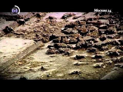 Тротуарная плитка. Часть 2 (Москва 24)