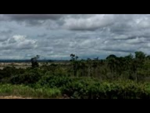 Peru's Military Tries To Curb Illegal Gold Mining In Amazon - Aerial Footage