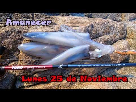 Eging Costa Brava - A Por Calamares Despues Del Temporal (Pesca De Madrugada)