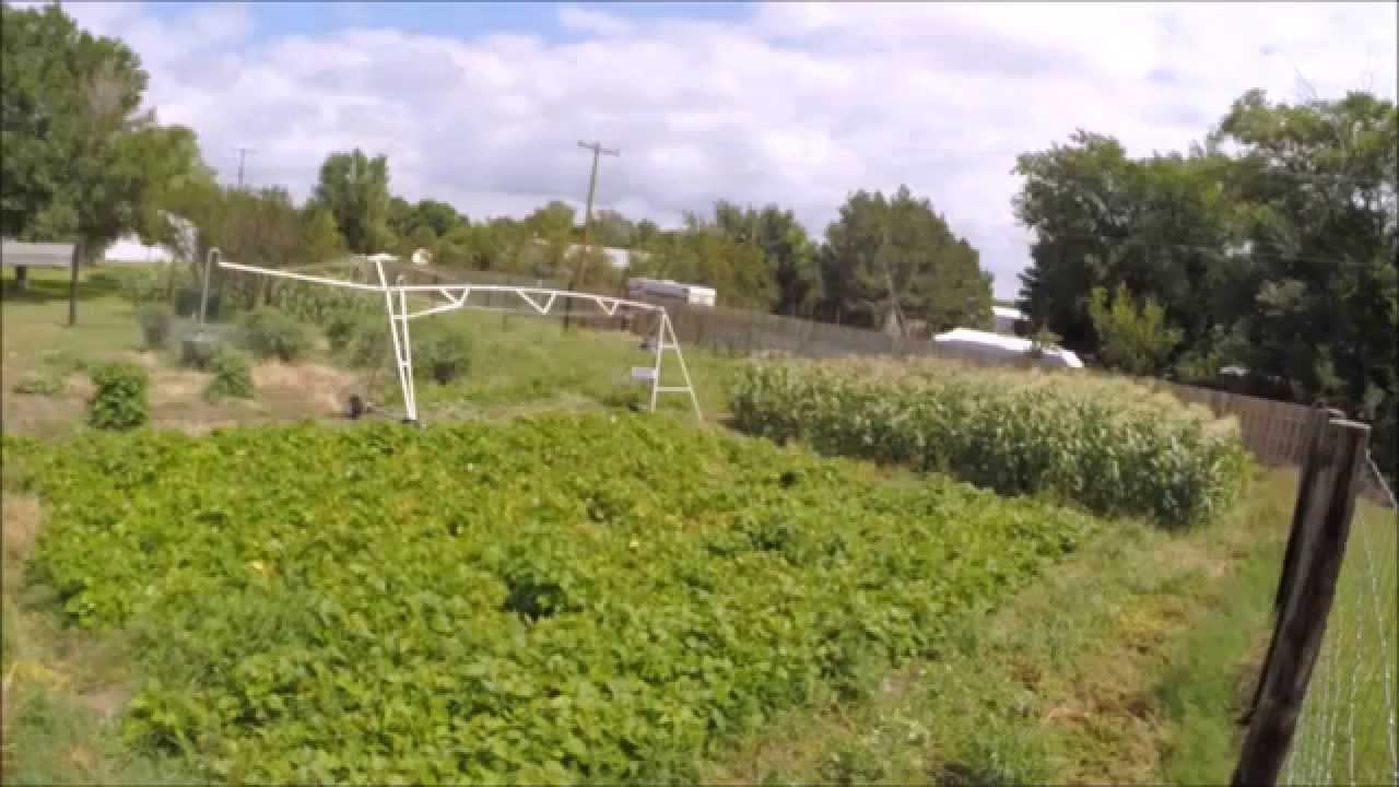 Mini Irrigation Garden Center Pivot Youtube