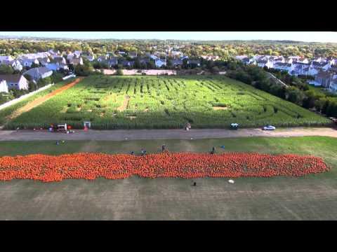 Long Island Pumpkin Farm- Produced by Aerial New York (HD)