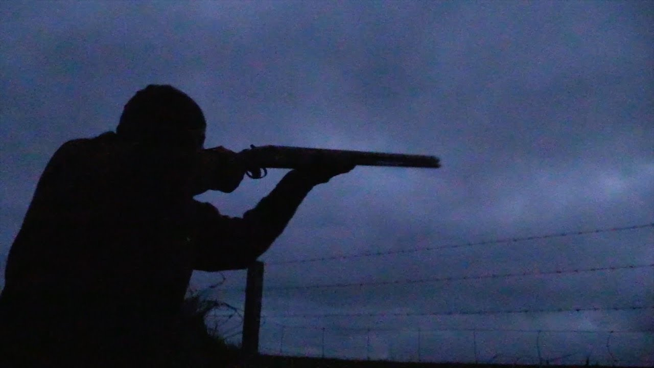 c08a09a2f718e The Shooting Show - wildfowling at first and last light - YouTube