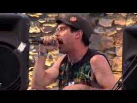 """Animal Collective """"leaf house  """" Live at Midi Festival  french riviera 2007"""