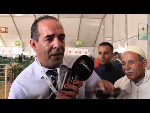 روبورتاج حول المركز الوطني للحفاظ و وحماية السلوقي بالمغرب