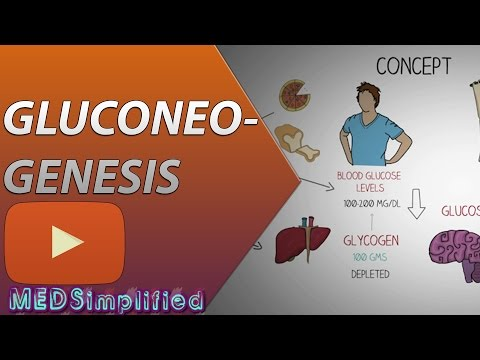 Gluconeogenesis Pathway Made Simple BIOCHEMISTERY