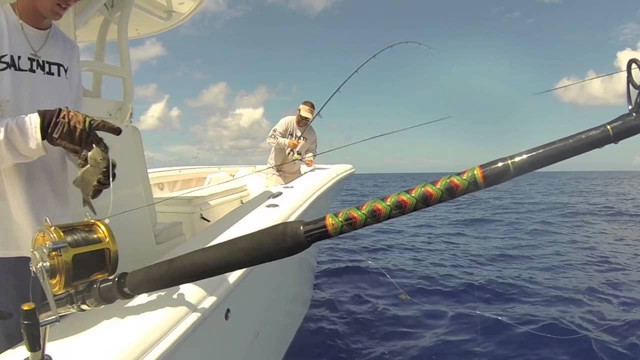Florida offshore fishing deep water gulf of mexico on the for Tuna fishing florida