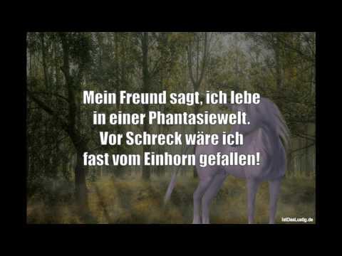 Lustige Sprüche Video Volume 157