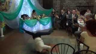 Жених на свадьбе дал жару! Выступление на свадьбе у Ивана и Насти
