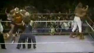 Hillbilly Jim Saves Hulk Hogan