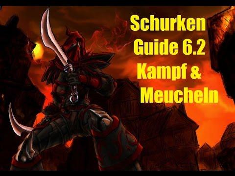 Wow Schurken Guide