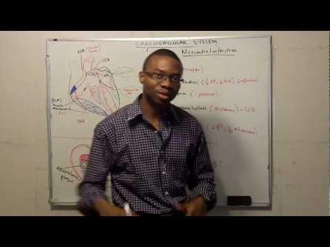 Management of Acute Myocardial Infarction (mneumonic)