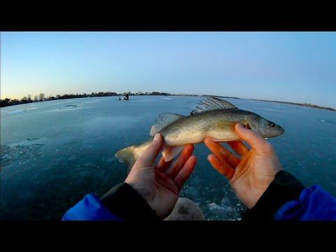 Walleye Fishing South Dakota First Ice