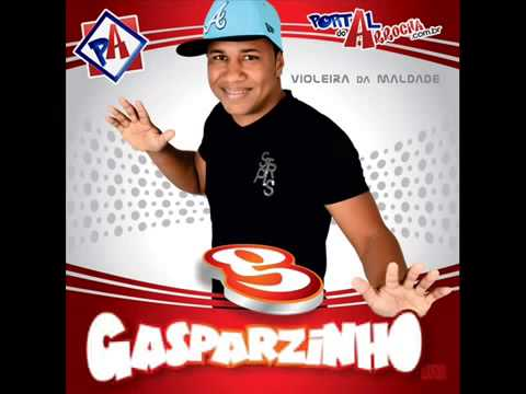 Banda Gasparzinho    Po Po Popozão 2013 Travel Video